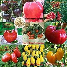 500 Stück Gemischt 9 Sorten Von Tomatensamen