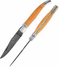 5862 Laguiole taschenmesser damastmesser,