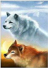 5D Diamant-Malerei Kits Wolf im