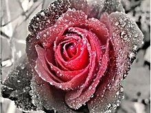 5D Diy Diamant Stickerei Schnee Rote Rose Blume