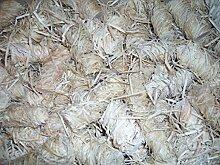 6 kg Bio-Feueranzünder aus Holzwolle und Naturwachs, geeignet für Kamin, Kachelofen, Grill, Lagerfeuer, zertifiziert FSC 100%