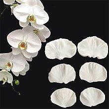 6/lot Phalaenopsis Blütenblatt Silikon Form,