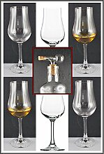 6 Nosing Gläser Stölzle Whisky Glas mit