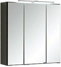 60 cm x 64 cm Spiegelschrank Tyntesfield mit
