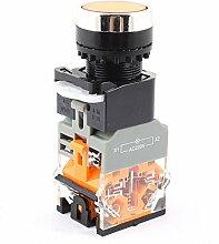 660V 10A DPST selbstsperrenden orange Lampe