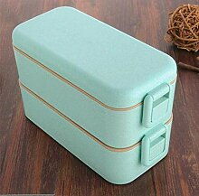 800ml-Qualitäts-Lunch Box Double Layer