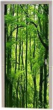A.Monamour Naturlandschaft Grüne Bäume Wald Bild