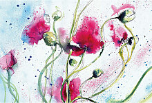 A.s.creations - DD119024 Poppies Watercolour
