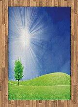 ABAKUHAUS Gras Teppich, Sonnenstrahlen mit