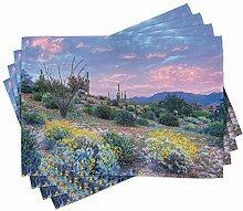 ABAKUHAUS Kaktus Platzmatten, Sonnenuntergang in