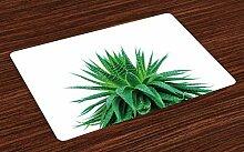 ABAKUHAUS Pflanze Platzmatten, Medizinische Aloe