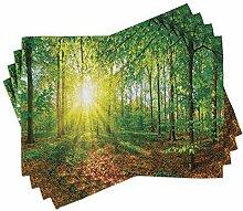 ABAKUHAUS Wald Platzmatten, Lichtung im Wald bei