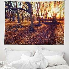ABAKUHAUS Wald Wandteppich, Sonnenuntergang Wald