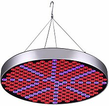 ABREOME Pflanzenlampe 50W 250 LEDs UFO Grow Lampe