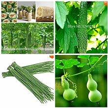 Absatzförderung! Mischen Sie Luffa / bean / Bitter Melone / Kürbis Gemüsesamen, Garten & Heim Klettern Gemüsesamen 55pcs