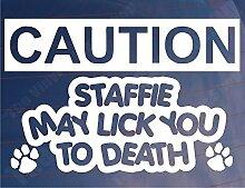 ACHTUNG Staffie können Lick You To Death Home