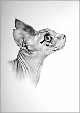 Acrylglasbild 100 x 130 cm: Portrait: Willy als