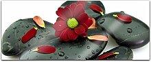 Acrylglasbild 100x40cm Wellness Steine Kat5 Blume