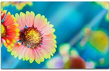 Acrylglasbilder 80x50cm Blume Blumen blau rosa