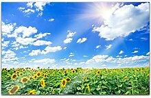 Acrylglasbilder 80x50cm Blumen Sommer Feld Himmel