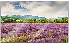 Acrylglasbilder 80x50cm Feld Wiese Blumen lila