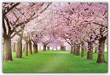 Acrylglasbilder - Acrylglasbild Frühling