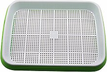 Adhere To Fly 1 Satz Bohnen Keimung Trays Sprouts