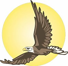 Adler im Flug 60 x 60 cm groß Aufkleber für Wand Fenster Tür Möbel Auto Laptop Spiegel……