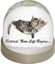 Advanta Katzen in Hängematte Ruhestand Foto Snow Globe Schneekugel Strumpffüller Geschenk, mehrfarbig, 9,2x 9,2x 8cm