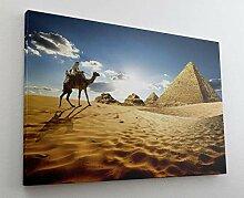 Ägypten Kamel Wüste Pyramide Leinwand Bild