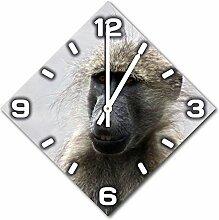 Affe, Design Wanduhr aus Alu Dibond zum Aufhängen, 30 cm Durchmesser, schmale Zeiger, schöne und moderne Wand Dekoration, mit qualitativem Quartz Uhrwerk