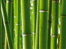 AG Design Bambus, Vlies Fototapete-4 Teile,