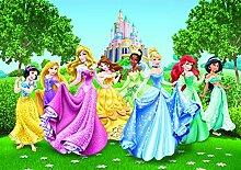 AG Design Disney Prinzessinen, Vlies Fototapete, 4