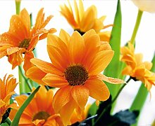 AG Design Fototapete FTNxxl0450 Photomurals Blumen