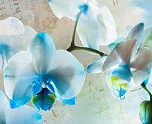 AG Design Fototapete FTNxxl1144 Photomurals Blumen