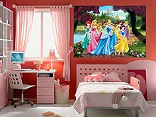 AG Design FTDm 0711 Disney Princess Prinzessinen,