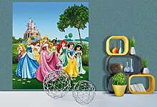 AG Design FTDxl 1912  Disney Princess