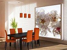 AG Design FTL 1608  Orchidee, Papier Fototapete -
