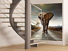 AG Design FTL 1614  Elefant, Papier Fototapete -