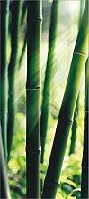 AG Design FTV 0214  Bambus, Papier Fototapete -