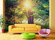 AG Design FTxxl 1464  Sonnenuntergang am Wald,