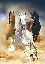 AG Design Pferde, Gardinen für Wohnzimmer,