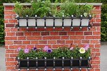 Agralan MWBB Blumenkasten zur Wandanbringung, mit