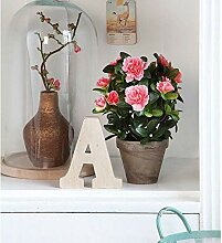 AGROBITS 100PCS Rosa Bonsai Azalee Bonsai Pink