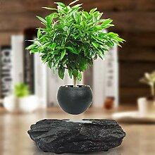 AGWa Bonsai Pot Schwimmdock - Magnetic Suspension