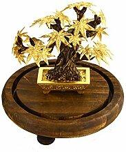 Ahorn Bonsai Feng Shui-Dekor Glück Reichtum
