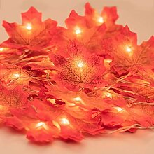 Ahornblatt Lichterketten, Maple Leaf Lichterketten