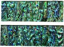 Aibote 1 Paar Natürliche Neuseeland Bunte Abalone
