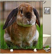 AieniD Duschvorhang Transparent Taschen Hase Bunt