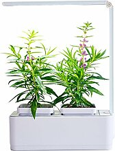 Air Garten Ernte und Lebensmittel Kräuter-Samen Tasche Anzug Wasser Pflanze Wachstum Maschine automatische Bewässerung Bewässerung faul Innen-Blumentopf Größe 260 * 210 * 107mm